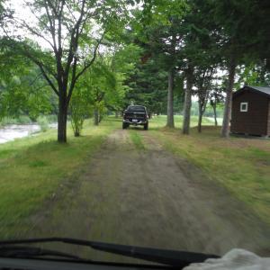 キャンプ場に熊出没