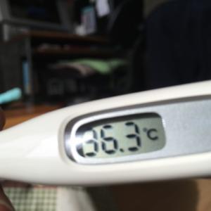1月11日(土)12日(日)風邪〜ジャンベ