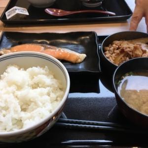 3月20日(土)吉野家〜地震