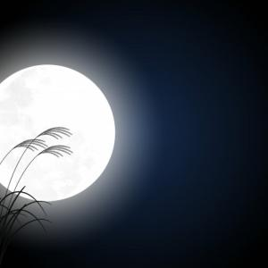 月を愛でて☆心身を養う