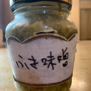 春が旬の山菜、いくつ知ってる?
