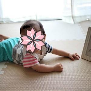 0歳5ヶ月の覚え書き(息子)