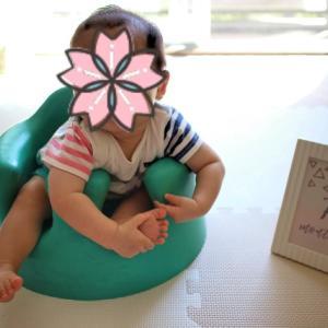 0歳6ヶ月の覚え書き(息子)