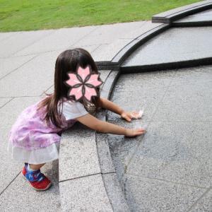 2歳9ヶ月の覚え書き(娘)