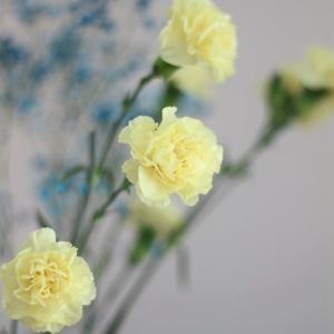 母の日のお花と、90cmバルーン