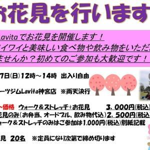 イベント【お花見】