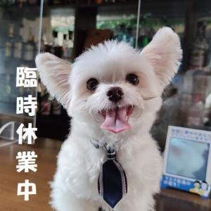 【重要】期間延長のお知らせ