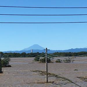 富士山は綺麗だが。。