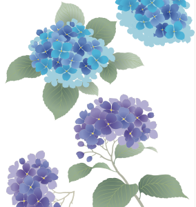 紫陽花 2種 制作のコツ