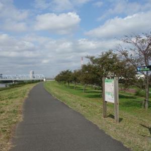 江戸川ウォーキング(北総線~総武線)