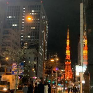 東京タワーもクリスマス仕様になっています。