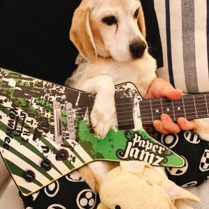 スーパーギタリストを目指す娘