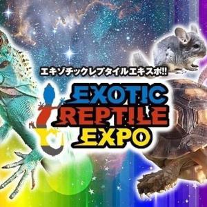 イベント情報!!~エキゾチックレプタイルエキスポ東京~