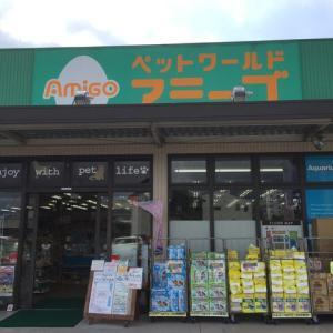 イベント情報!!~アミーゴ松山久米店~