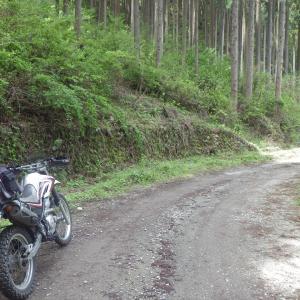 林道小岩線~再び~