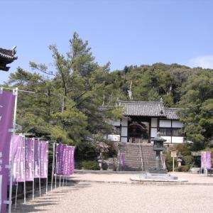 太子廟と桜