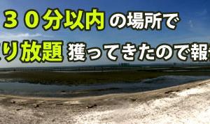 【千葉】都内から30分以内のバーチ―でアサリ取り放題【潮干狩り】