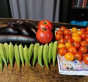 夏野菜 てんこ盛り