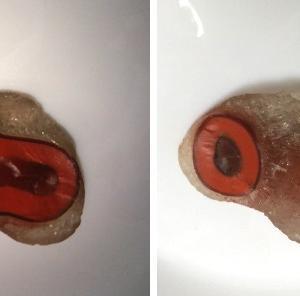 面白い石探し 2