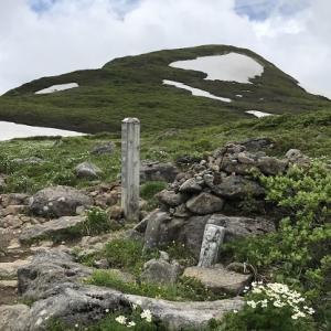 焼石岳 と ハクサンイチゲ  Ⅱ (岩手県 奥州市)