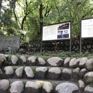 岩宿遺跡 (群馬県 みどり市)
