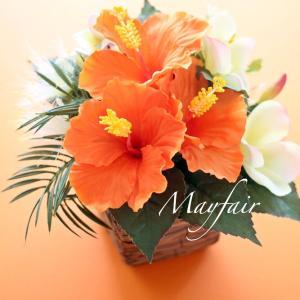 南国のお花で…