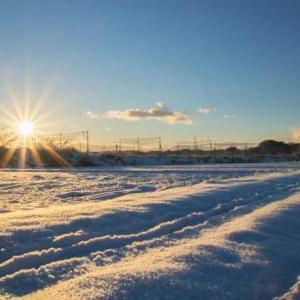 今年は寒いし雪もよく降る