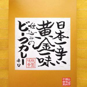 507食目:日本一辛い黄金一味仕込みのビーフカレー 辛口(祇園味幸)