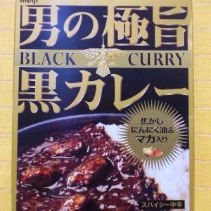 550食目:男の極旨黒カレー スパイシー中辛(旧型)(明治)【回顧】