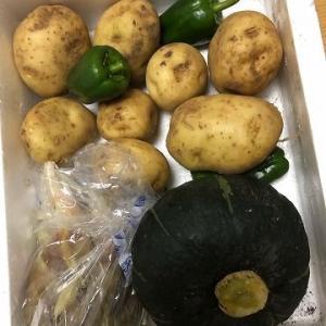 精魂込めて作った野菜を食べるのが楽しみ