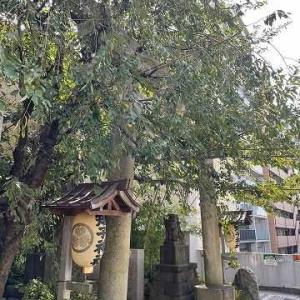 五反田から庭園美術館へ