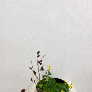 写景盛花様式本位 はんの木