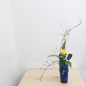瓶花 傾斜型