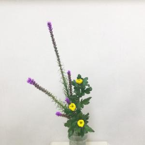 瓶花 直立型