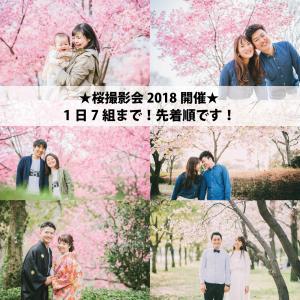 桜で撮影会2018☆開催in大阪♪