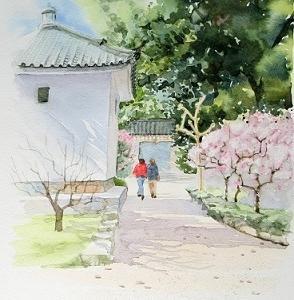 道明寺天満宮の梅林