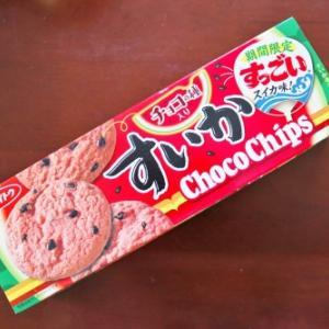 すいかチョコチップクッキーと言う儂の理解力を凌駕するクッキー