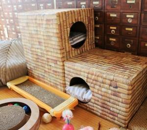 子猫部屋の段ボールハウスを新しくしました。