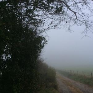 秋分を楽しく過ごすにはー霧の精霊からのメッセージも