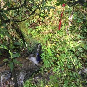 村の聖女マリアの泉