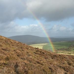 虹、虹、3日間虹が現れました。自然と繋がるとこーなります。