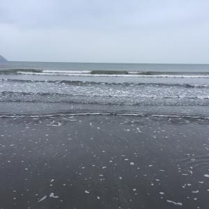 春の海はさむい