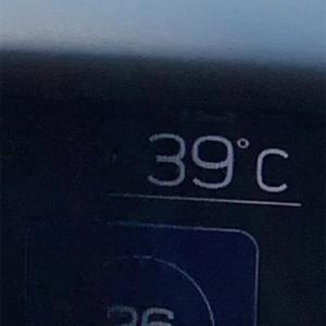 ロケ。39度?!