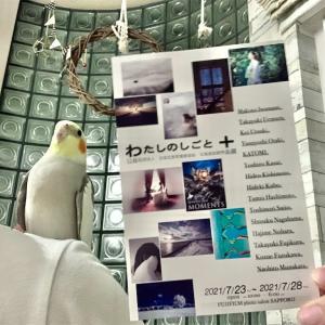 明日は終日、富士フイルムフォトサロンにいます!