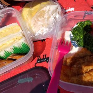 公園でピクニックは寒さとの闘いでした  f(^ー^;