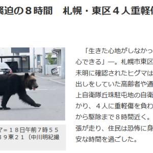 ひゃ〰️! くまが、熊が出たんですよ (((((゜゜;)