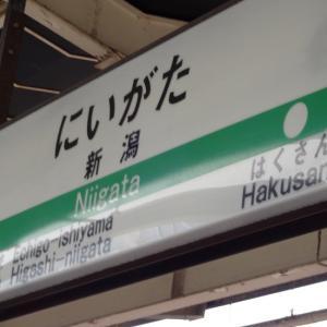 LFJ新潟に行ってきました!