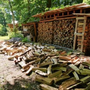 薪の天日干し