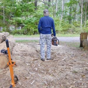 直径50cm越えのニセアカシアの薪づくり