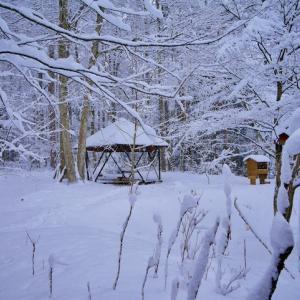 今年1番の積雪でも野外レストランは大賑わい